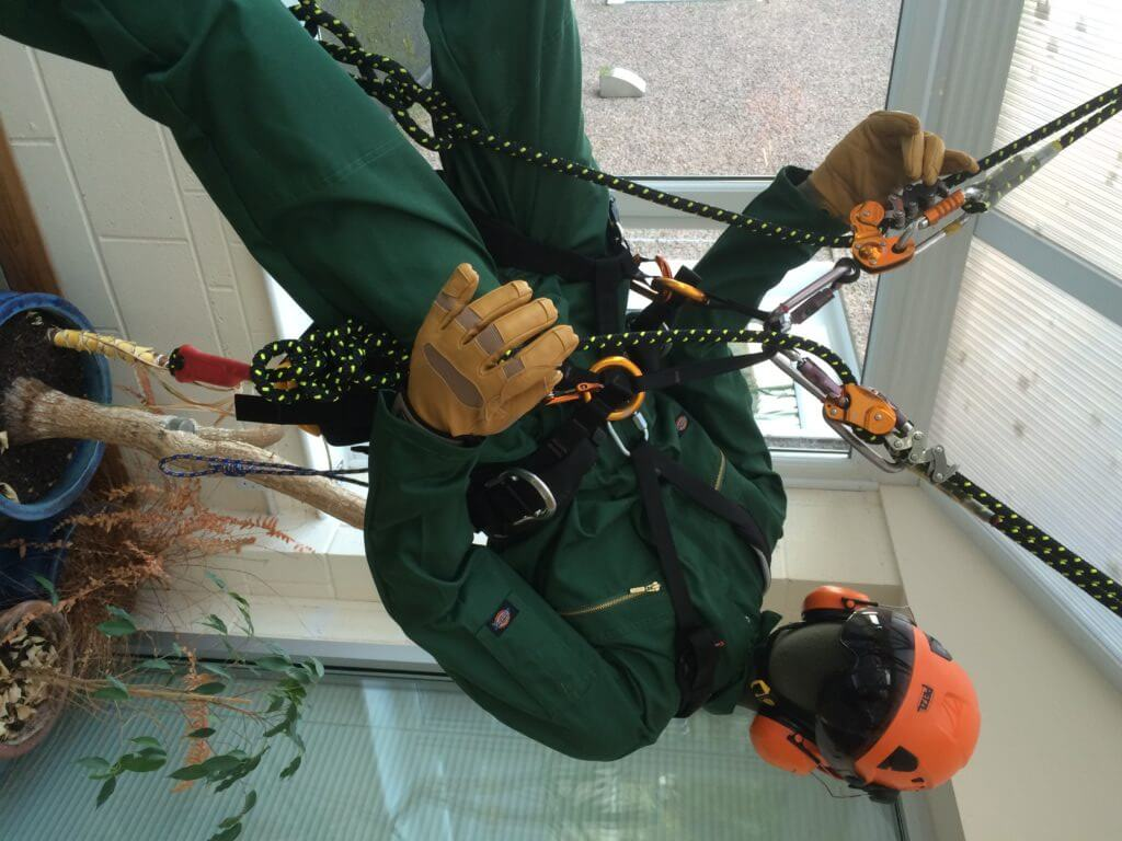 Tree climbing equipment from Petzl