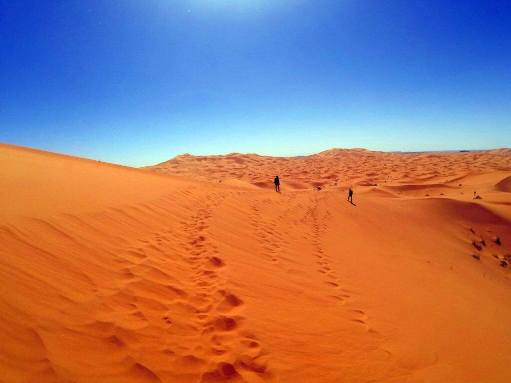 Red Dunes in the Sahara